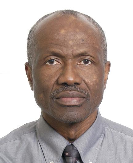 Emmanuel Nikiema, Associate Professor