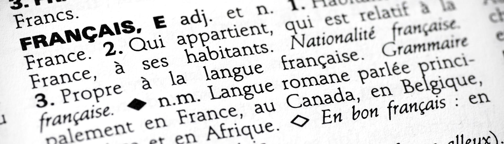 "A close-up of the definition of ""francais(e)"" in a French dictionary"
